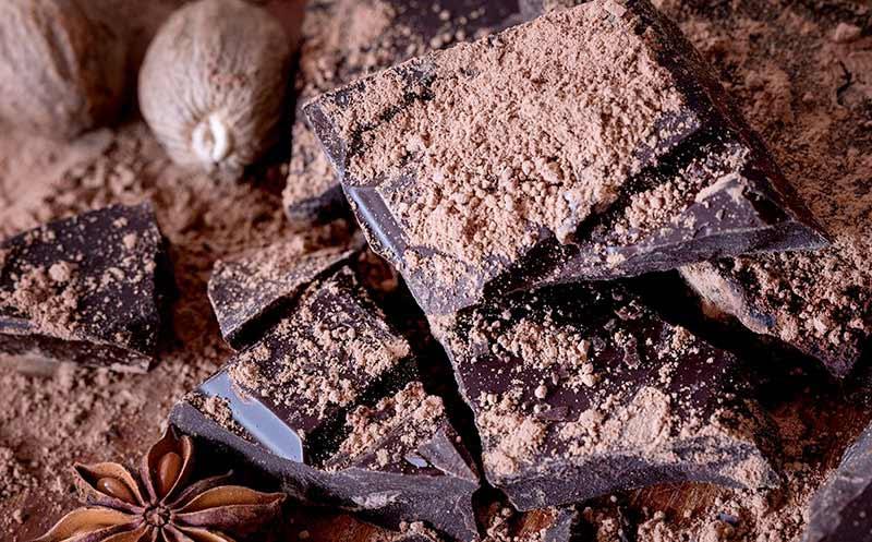 Schweizer Schokoladen-Initiative