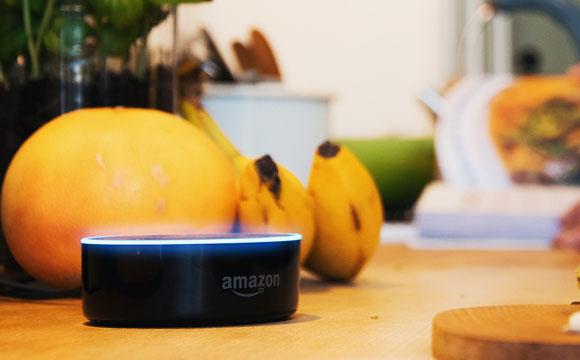 Allyouneed Fresh:Online-Supermarkt bietet Einkauf mit Amazon-Alexa
