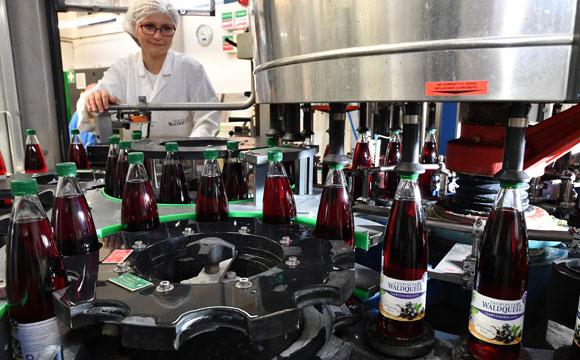 Thüringer Waldquell: Regionale Produkte sind gefragt