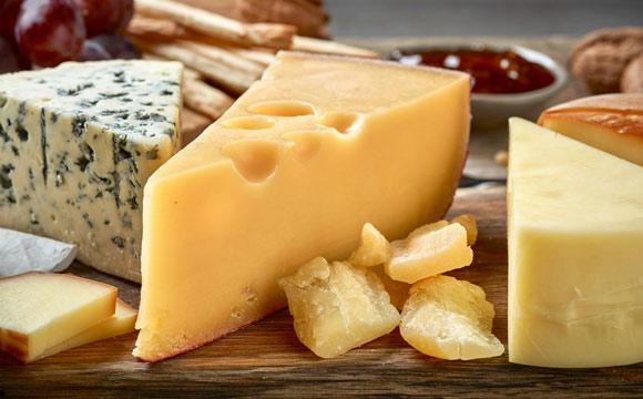 Käse-Sommelier startet