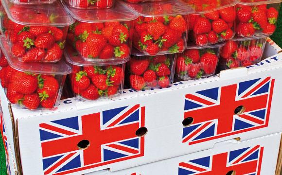 Ernährungsindustrie (BVE): Der Brexit macht Sorge