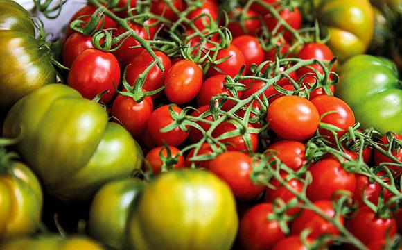 Verkauft Obst und Gemüse mit optischen Mängeln