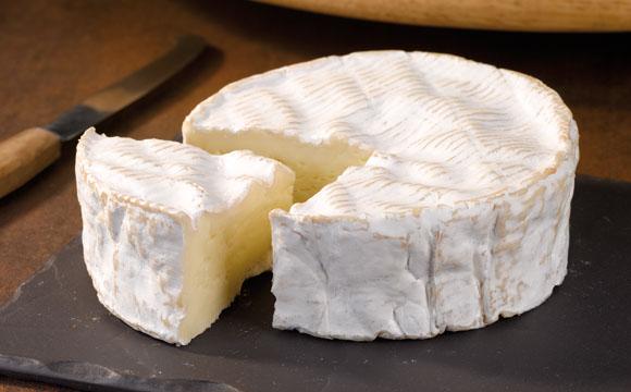 Käse-Rückruf:Mögliche Darm-Infektionen