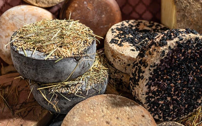 Veredeln von Käse: Affinieren heißt Ausprobieren