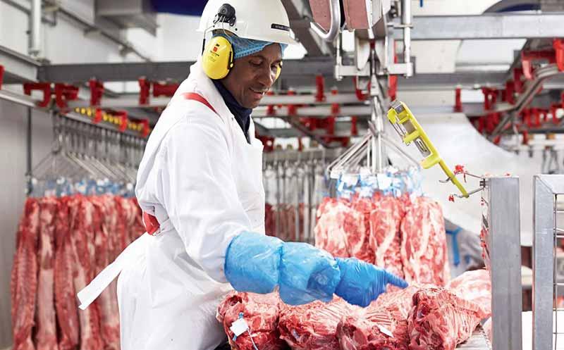 Belgien: Beflügelt von Bio-Schweinefleisch