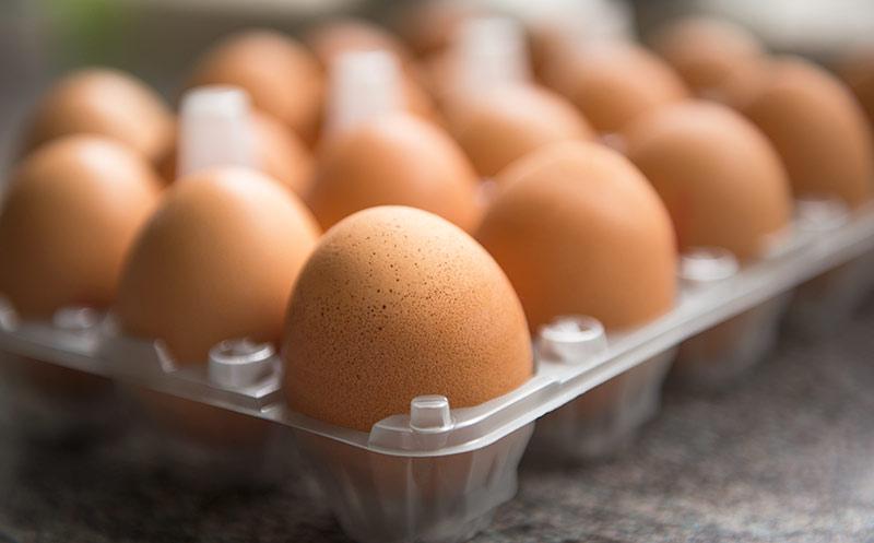 Klöckner will Infos auch bei verarbeiteten Eiern