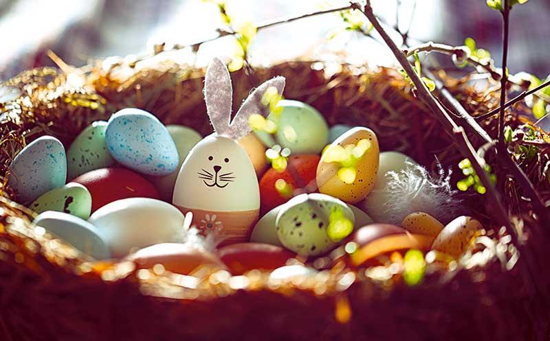Ostern: Hase plus Ei ante portas