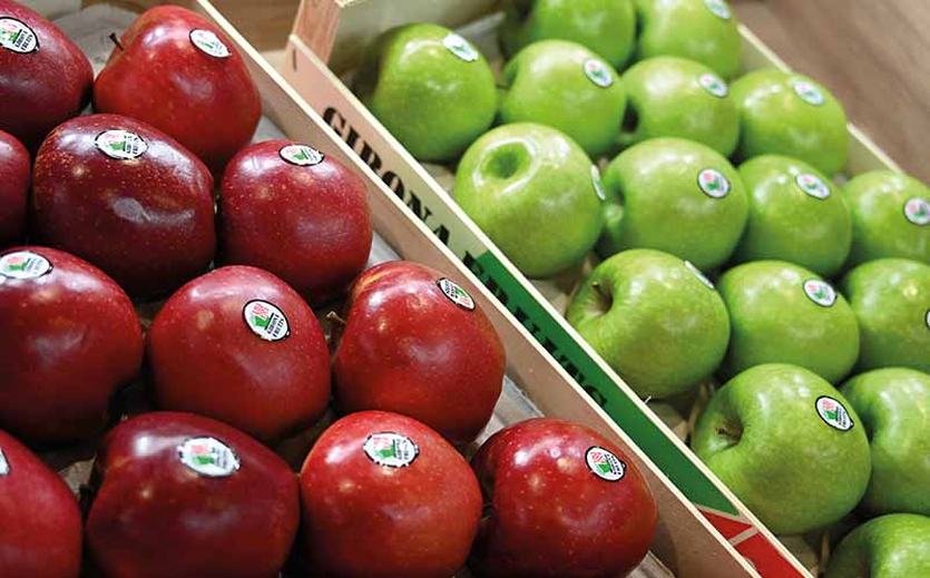 Fruit Logistica: Frische Ideen