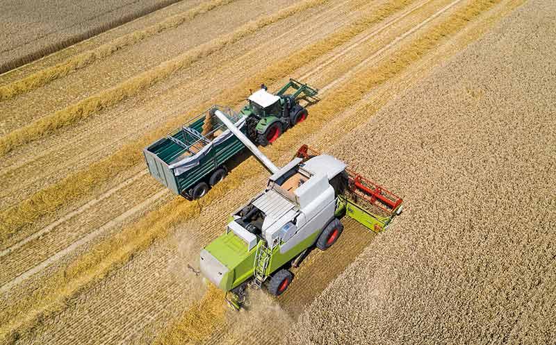 Corona: Getreide ist gefragt
