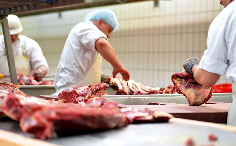 Corona aktuell: Fleischbranche unter Beschuss