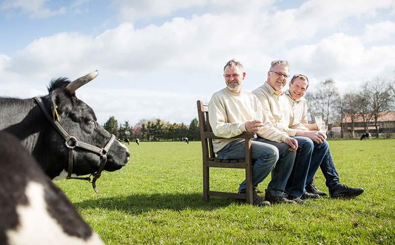 Elternzeit für Kühe