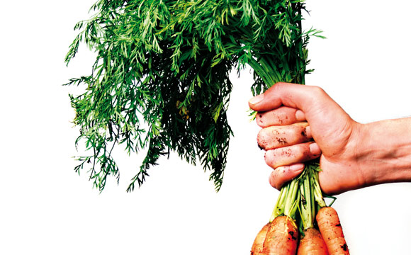 regionale Lebensmittel: Höhere Preise akzeptiert