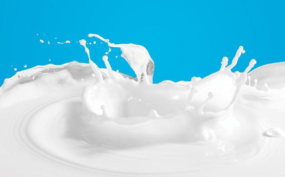 Umsatzbringer Milchgetränke