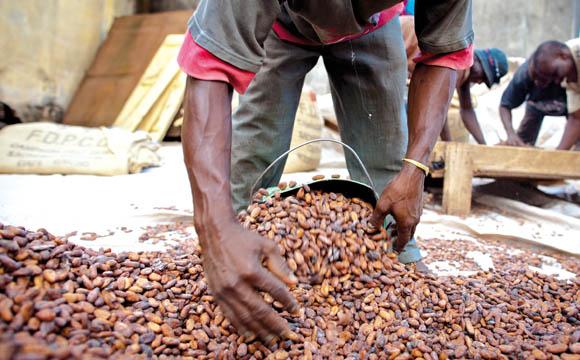 Ziele zu nachhaltigem Kakao früher erfüllt