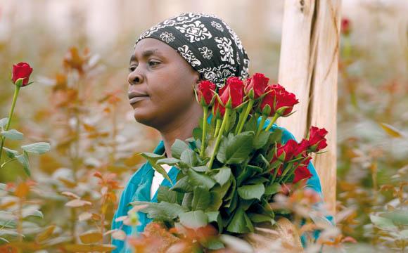 Fairtrade:Kunden mögen faire Blumen und Kaffee