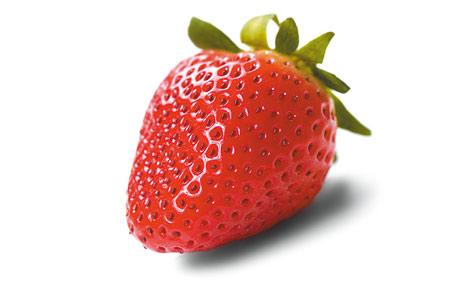Frucht des Monats:Die Empfindliche