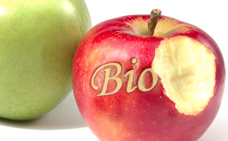 Bringt Bio-Supermarkt an den Start