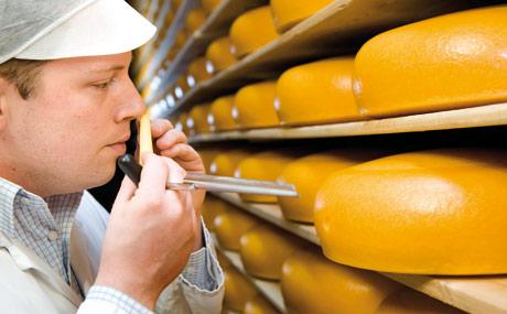 FrieslandCampina Cheese