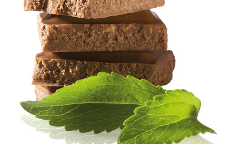 Entwicklungsbasis Schokolade