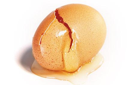 Das geplatzte Image der (Bio-)Eier-Branche