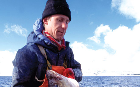 Die Deutschen lieben Lachs aus Norwegen