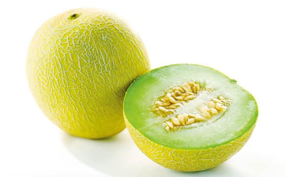 Charentais melone seite 2 for Melone charentais