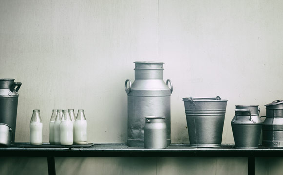 Faires Milchprojekt