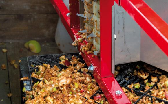 Ab September werden die frisch geernteten Äpfel in den Apfelweinkeltereien angeliefert. Dort sortiert man zunächst Äpfel mit Faulstellen aus. Das Obst wird gewaschen und grob gemahlen. Die so entstandene Apfelmaische wird anschließend ausgepresst.