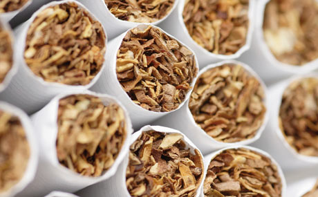 Tabakwaren: Umsatz wächst leicht