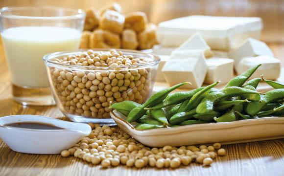 Sojaprodukte wie Tofu ergeben quarkähnliche Aufstriche.