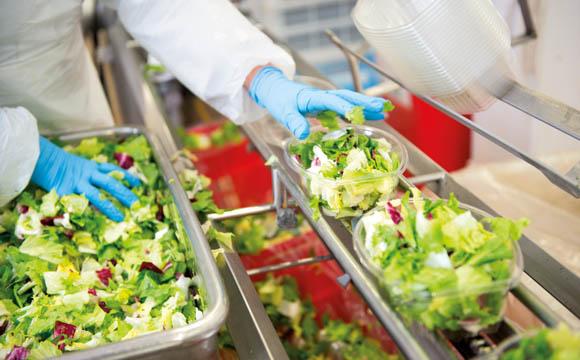 Fresh-Cut-Salate