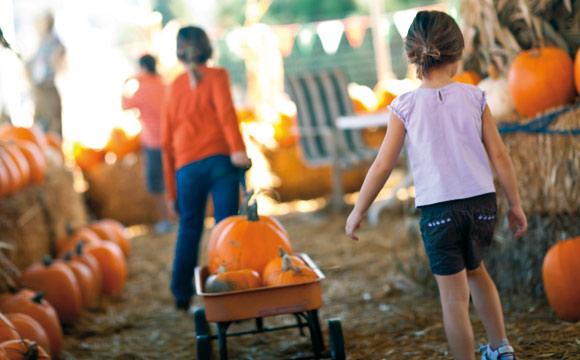 Kinder können mithelfen, beim Schnitzen brauchen sie Unterstützung.