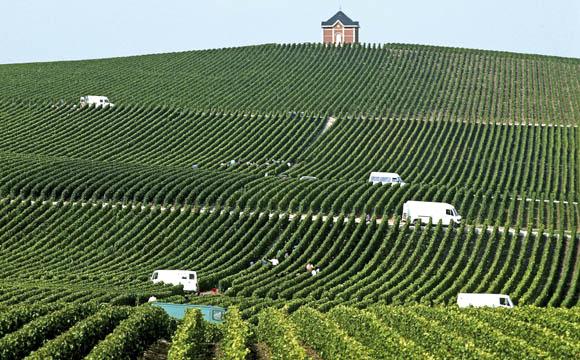 Das Weinbaugebiet Champagne liegt in Frankreich, rund 130 km östlich von Paris, entlang des Flusses Marne.