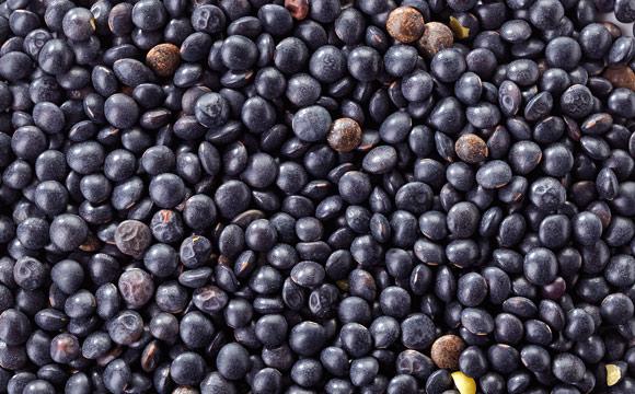 Belugalinsen<br /> tragen ihren Namen, weil sie optisch Kaviar ähnlich sehen. Die schwarz-glänzenden Linsen eignen sich als Gemüsebeilage oder im Salat.