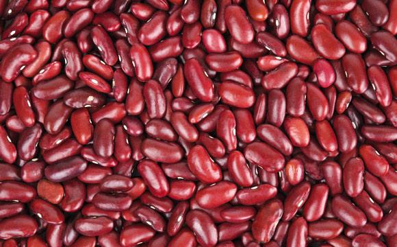 Kidneybohnen<br /> weisen eine kräftige, rote Schale und einen mehligen Kern auf. Sie sind festkochend und Hauptzutat für Chili con Carne.