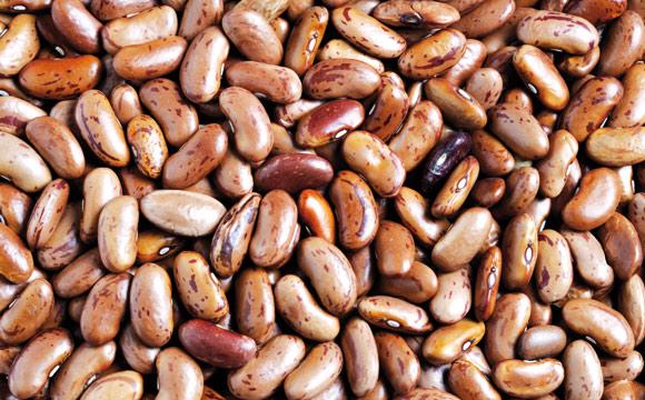 Wachtelbohnen<br /> verlieren beim Kochen ihre Sprenkel. Wachtelbohnen nehmen leicht den Geschmack anderer Zutaten und Gewürze an. Gut für Eintöpfe.