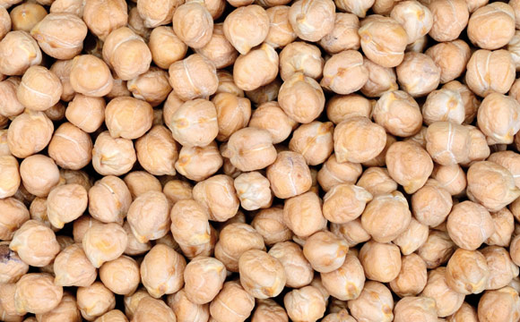 Kichererbsen<br /> zählen in vielen Ländern wie etwa Indien zu den Grundnahrungsmitteln. Gekocht lassen sie sich als Püree zu Hummus verarbeiten.