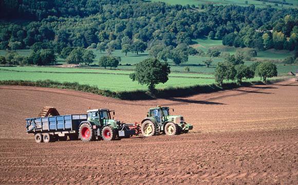 Kartoffelernte im mittleren Westen Englands.