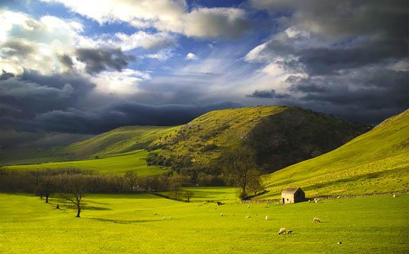 Der Golfstrom sorgt für ein ausgeglichenes Klima. Die Schafe stehen das ganze Jahr auf der Weide.