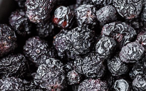 Aronia-Beeren: Aronia- oder Apfelbeeren kommen ursprünglich aus Nordamerika, werden heute auch hierzulande angebaut. Sie enthalten sehr viel Vitamin C – ähnlich wie Sanddorn.
