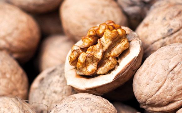 Nüsse: Nüsse gelten als sehr gesund aufgrund ihres hohen Gehalts an gesunden Fettsäuren, Proteinen und Mineralien, Ballaststoffen und hochwertiger Energielieferant.
