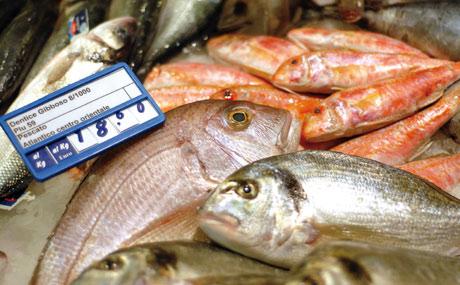 Natürlich Frisch: Fisch ohne Ende.