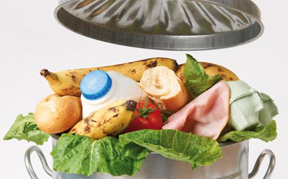 "Lebensmittelverschwendung: ""Containern"" legalisieren – Wegwerfen verbieten?"