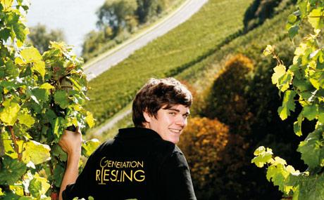 Deutscher Wein - Weißwein