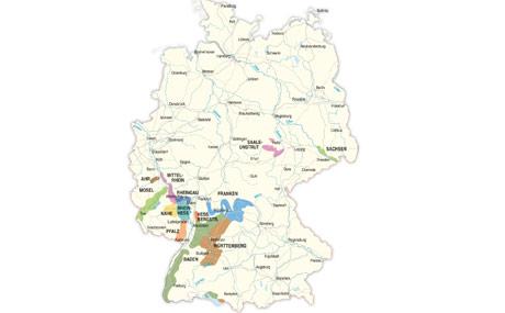 Zwei Drittel der Anbaufläche zwischen Baden und Sachsen sind mit weißen Rebsorten wie Riesling oder Silvaner bestockt.