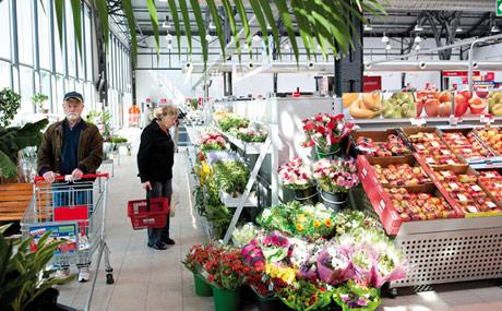 Farbenfroh: Schnittblumen und Orchideen werden gern gekauft.