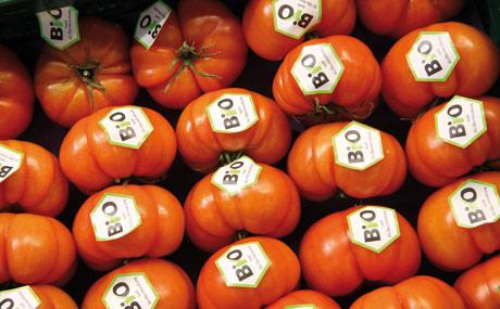 Markt für Bio-Produkte wächst weiter