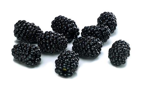 Brombeeren: Vollreife Brombeeren sind dunkelrot, schwarz-violett bis schwarz glänzend, sehr saftig und süß-säuerlich im Geschmack. Wegen ihrer dunklen Farbe nehmen sie viel Wärme auf und werden schnell überreif. (Bildquelle: Agrarmarkt Informations-Gesellschaft mbH (AMI)/Pressebüro deutsches Obst und Gemüse)
