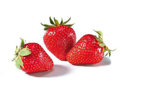 Erdbeeren: Die hellroten Früchte kommen mit Kelch und kurzem (nicht vertrocknetem) Stiel in den Verkauf. Sie müssen sauber, dürfen aber nicht gewaschen sein – das würde die Haltbarkeit verringern. (Bildquelle: Agrarmarkt Informations-Gesellschaft mbH (AMI)/Pressebüro deutsches Obst und Gemüse)