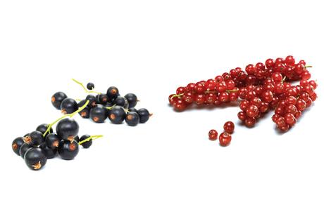 Johannisbeeren: Ob rot, schwarz oder sogar weiß – von allen Beerenarten haben Johannisbeeren den höchsten Fruchtsäureanteil. Rote schmecken süß-aromatisch bis herb-säuerlich, Schwarze säuerlich-bitter. (Bildquelle: Agrarmarkt Informations-Gesellschaft mbH (AMI)/Pressebüro deutsches Obst und Gemüse)